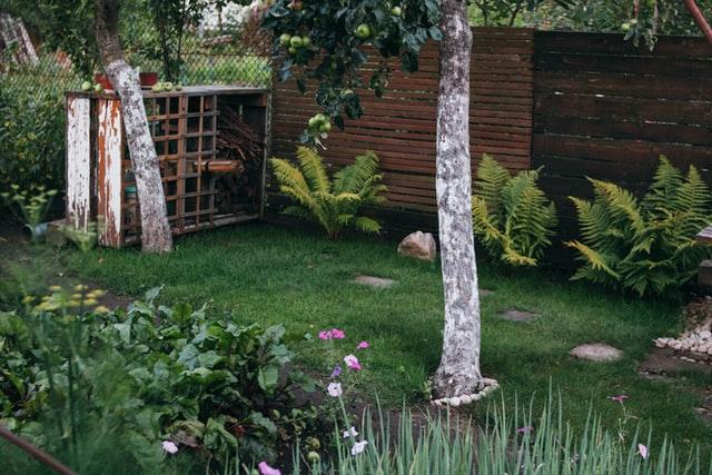 הפוך את החצר האחורית שלך לבטיחותית ופרטית עם גדר